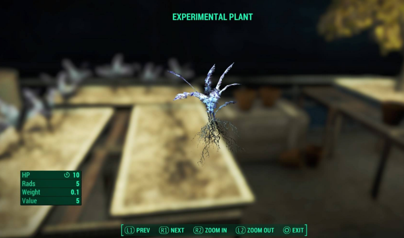 Experimental Plant