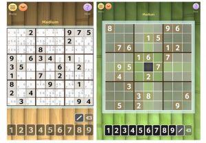 Sudoku-Brainium