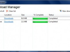 Best Download Managers for Windows