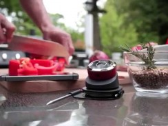 iDevices iGrill Mini – What is it?