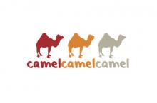 Best Camel Camel Camel Alternatives